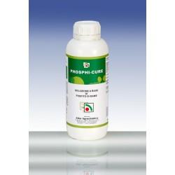 Phosphi-cure