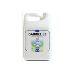 GABRIEL BZ